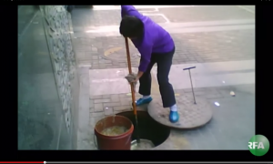 screengrab from video - shows a woman scooping a sloppy substance from a sewer