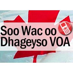VOA Somali Program Available in Canada
