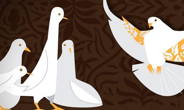 """Illustration of pigeons for RFA edition of Yasin's short story """"Wild Pigeon""""."""